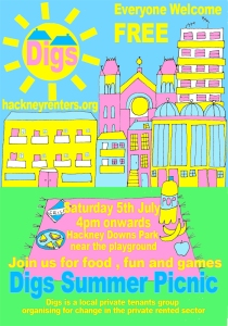 Digs summer Picnic poster 2014
